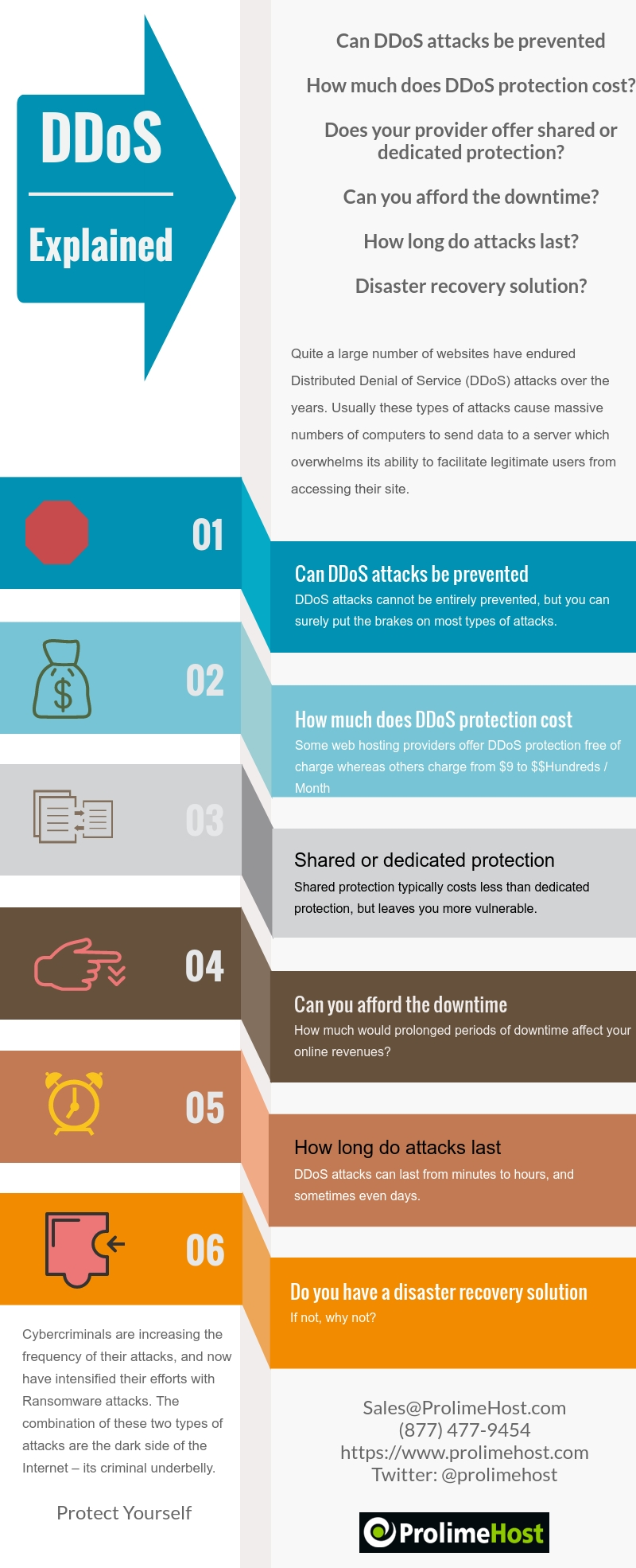 DDoS Explained Infographic