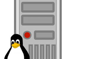 Linux Dedicated Server
